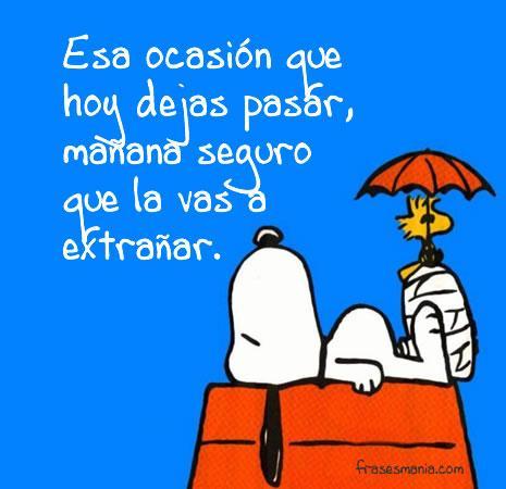 Snoopy frases de amor - Imagui